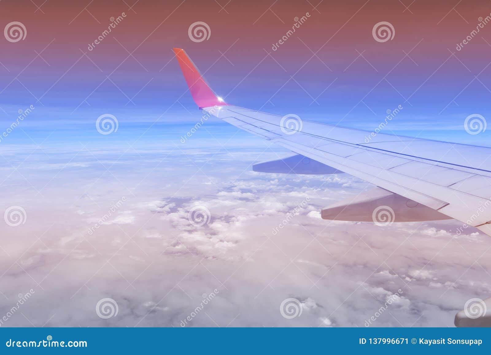 Couleurs roses et bleues de ciel Fond abstrait de ciel Coups courbes pris de l avion Bleu en pastel doux