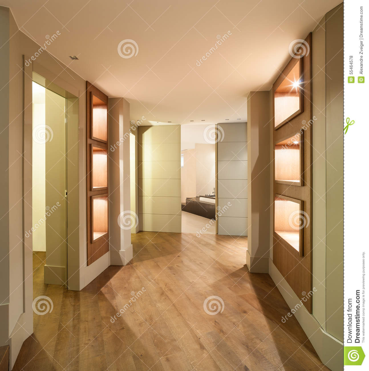 Couloir d 39 une maison moderne photo stock image 55464578 for Photo couloir maison