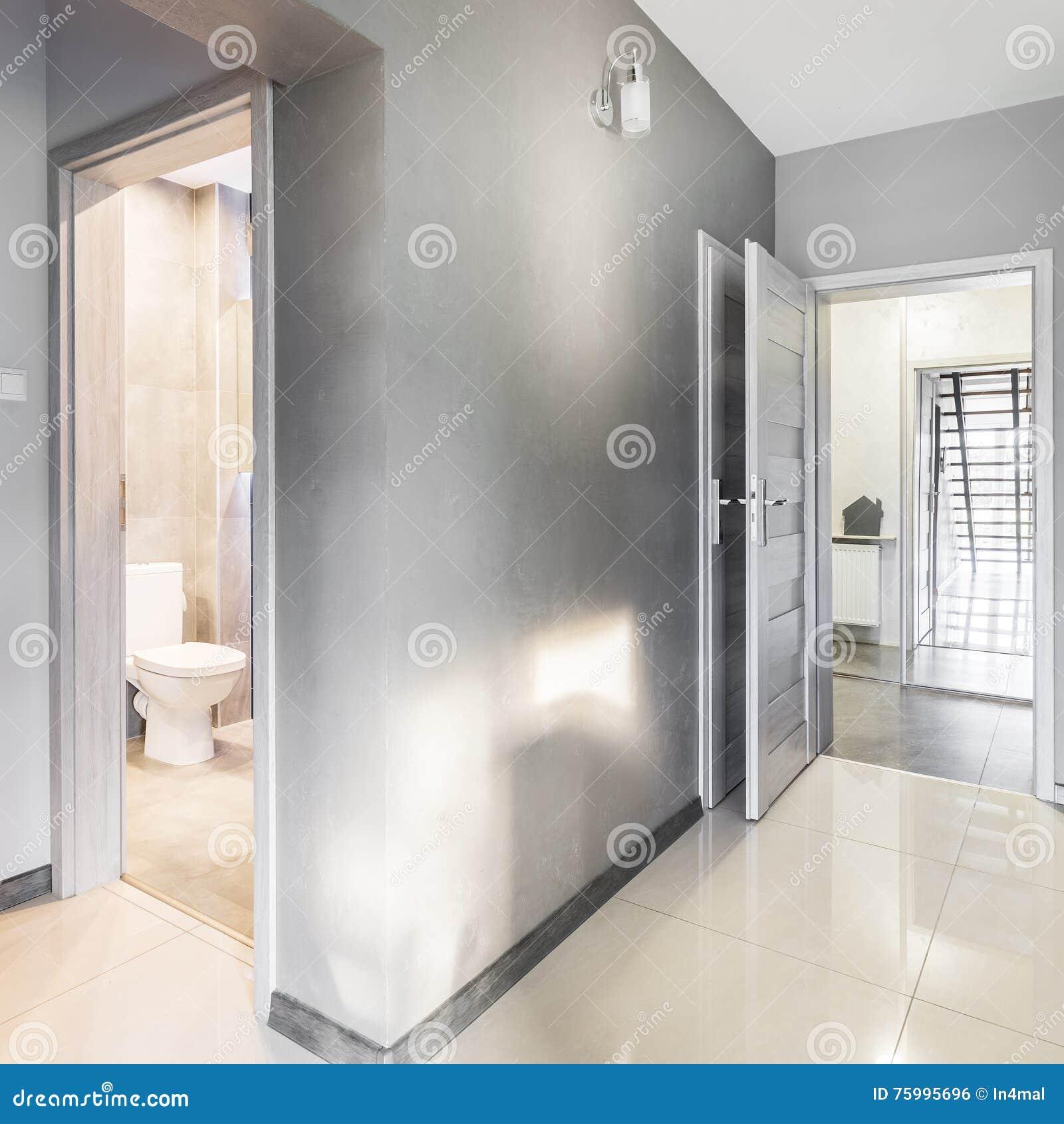 Couloir De Villa Dans L\'idée Grise Photo stock - Image du ...