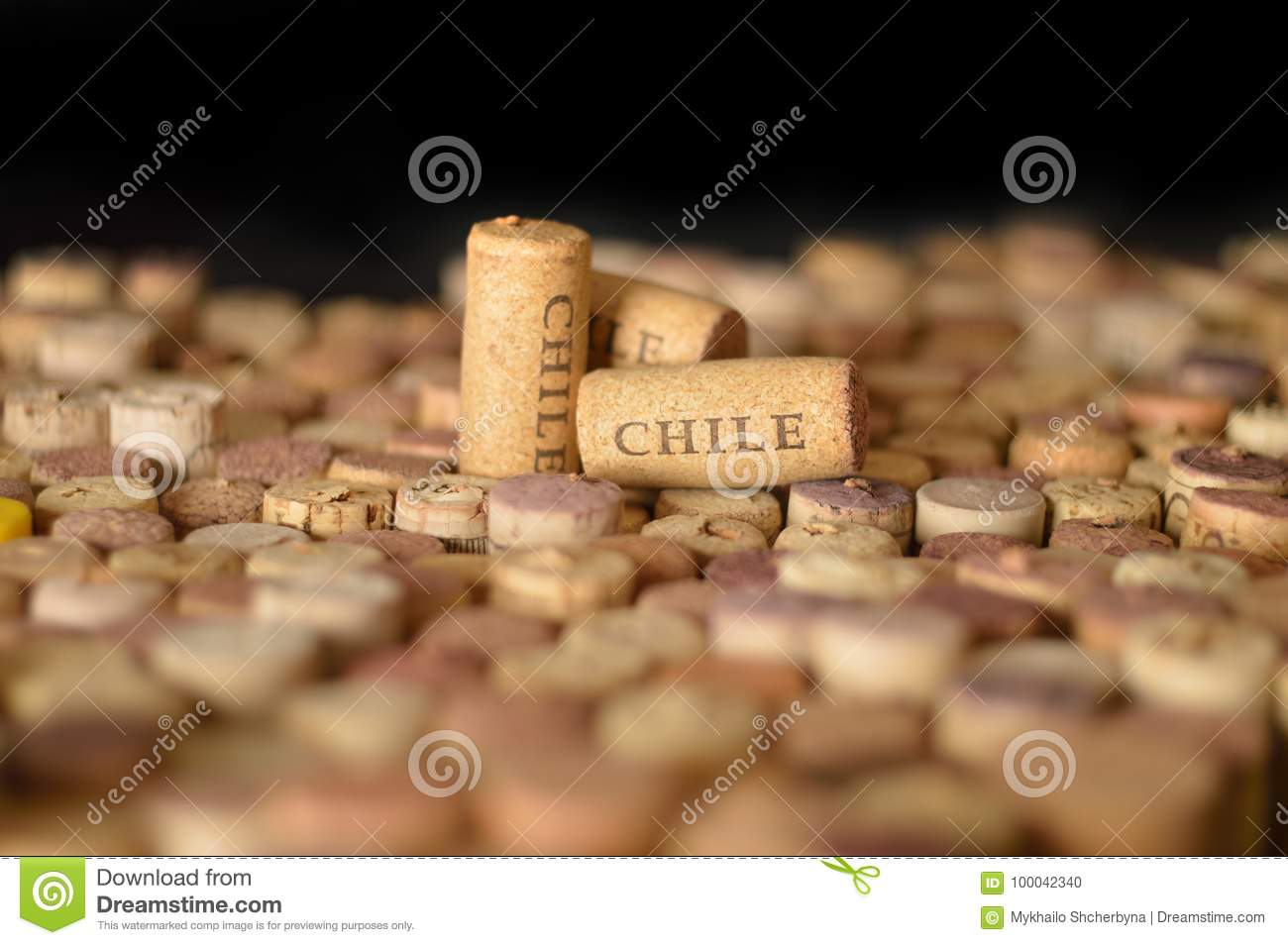 Countries Winemakers Chile S Name On Wine Corks Stock Photo Image Of Focus Grape 100042340