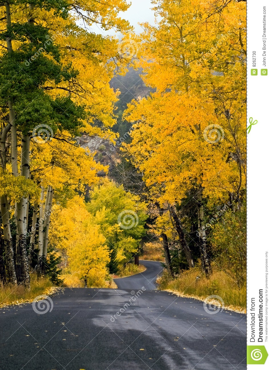 A Country Colorful Autumn Road