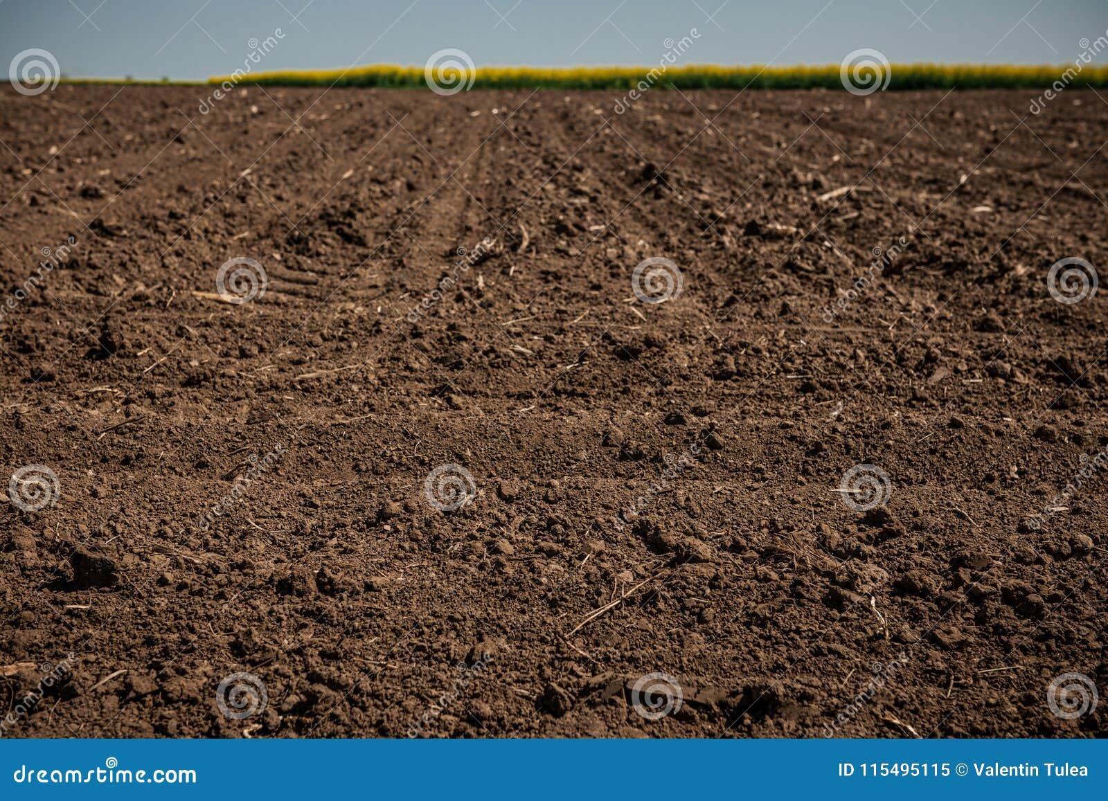 Unworked land, field. Dirt texture. Country dirt field texture.