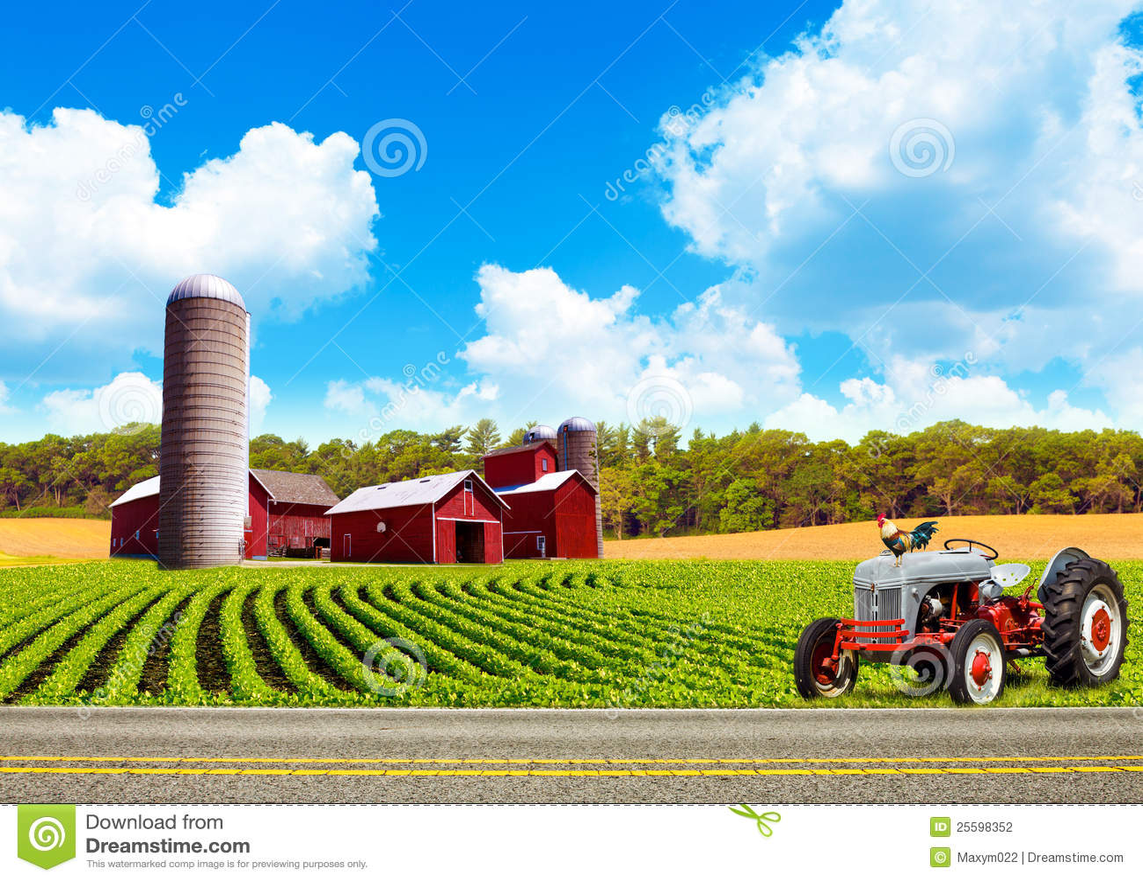 Country Farm Landscape