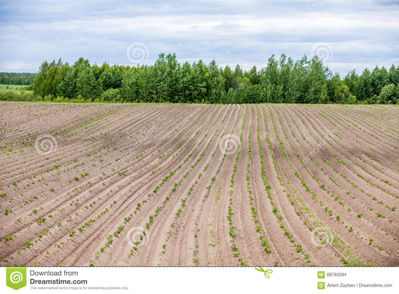 Download Country Farm Landscape