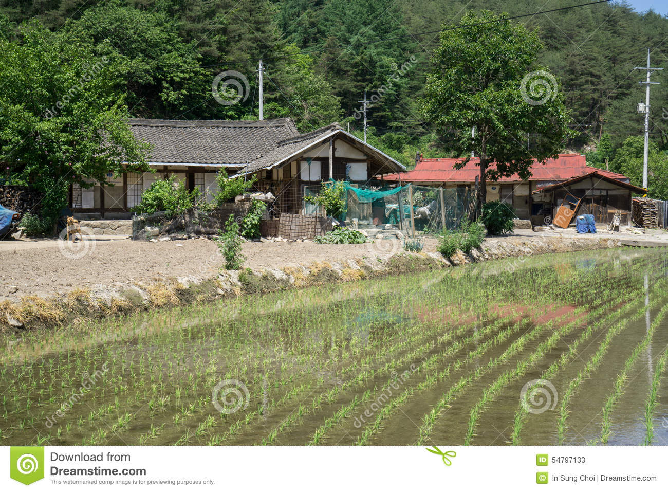 house design in south korea with Stock Photo Country Farmhouse Traditional Korean Farm House Small Rice Paddy Out Front Taken Gangneung South Korea Hot Image54797133 on Gallery likewise Asos Headquarters Morey Smith also Stock Photos Korean Old Buildings Outside Inside Image23252133 further Rainbow 6 operator idea from yellowthekid and art furthermore Stock Illustration Gyeongbokgung Symbol Seoul Korea Retro Rubber St  Image58344517.