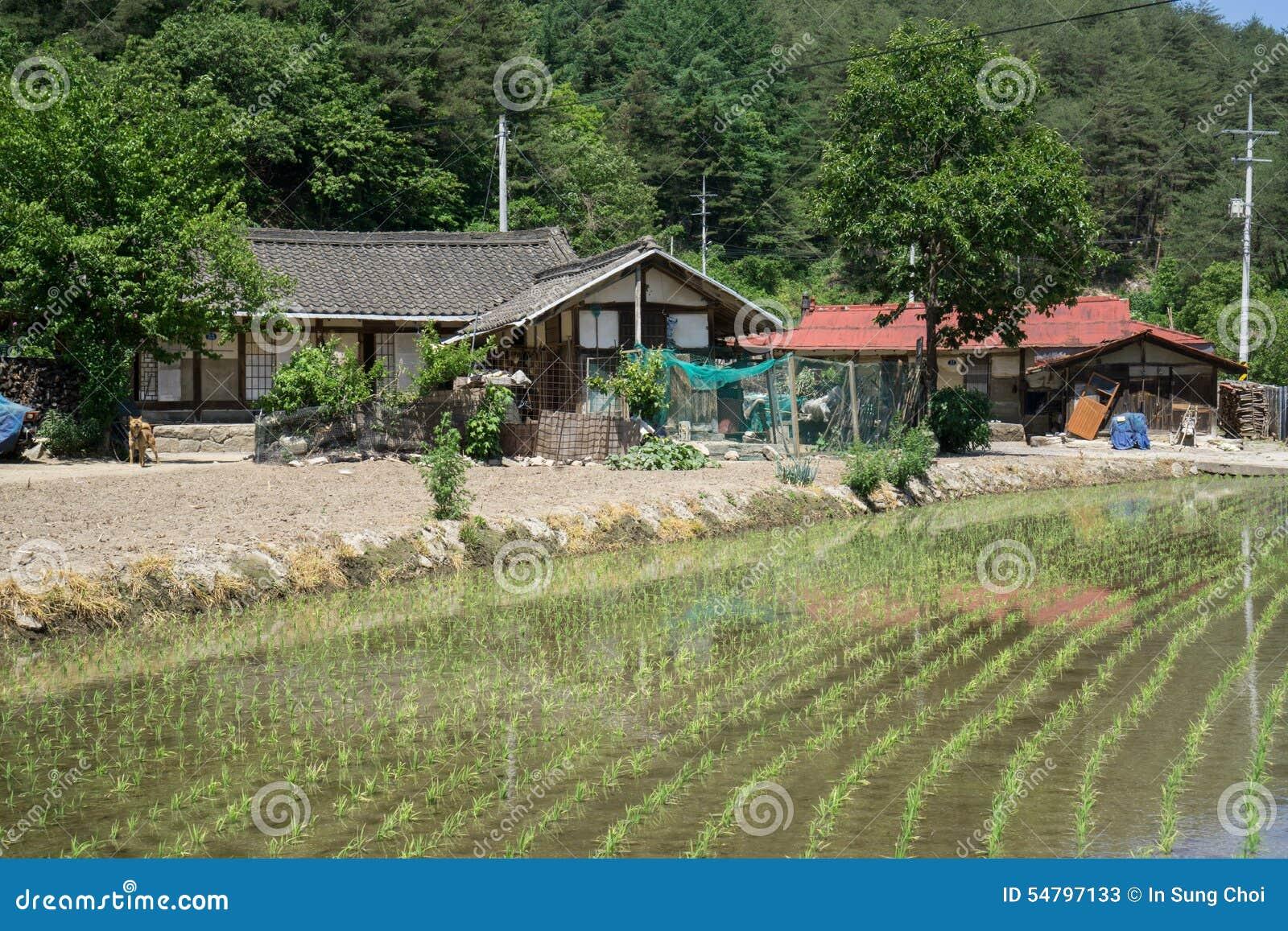 Country farmhouse stock photo image 54797133 for Small house design korean