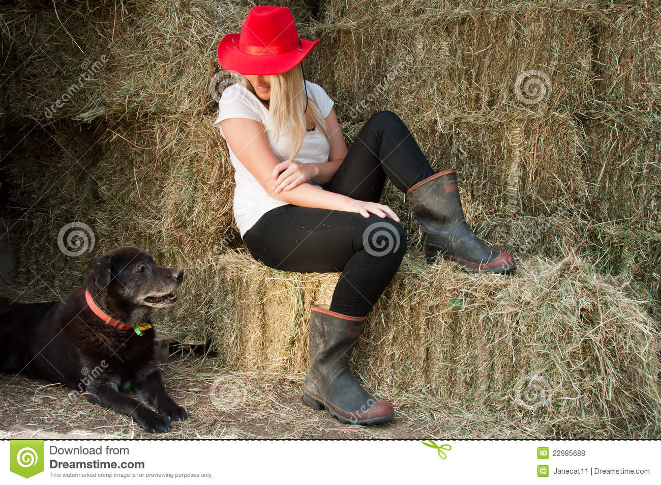 Country Girl And Farm Dog Stock Photo Image Of Girl