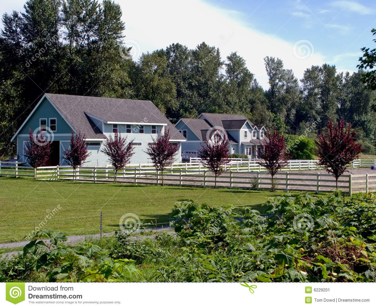 Country Home And Landscaping Stock Image Image 6229201