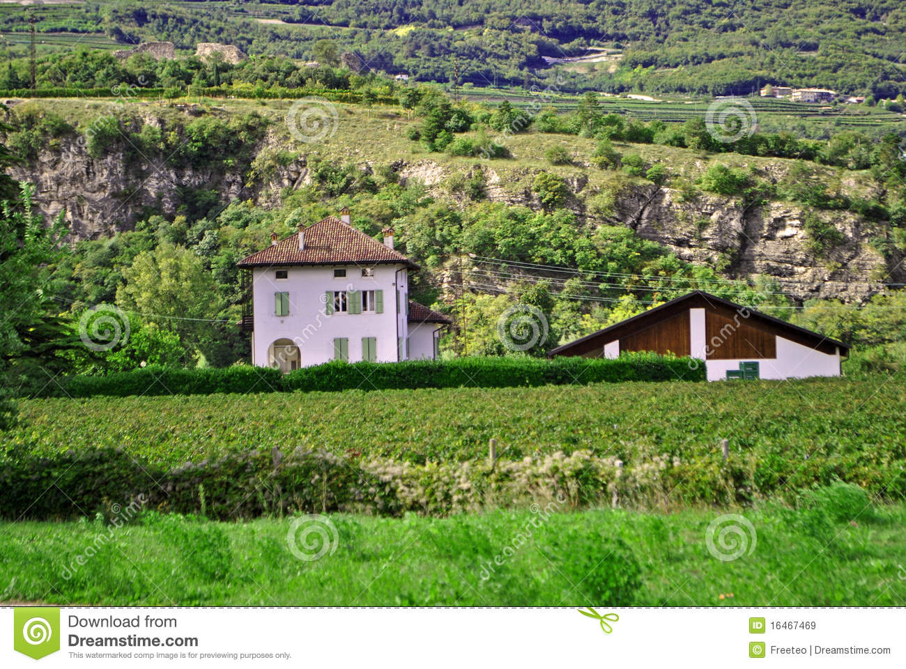 Country house royalty free stock images image 16467469 for Country house online