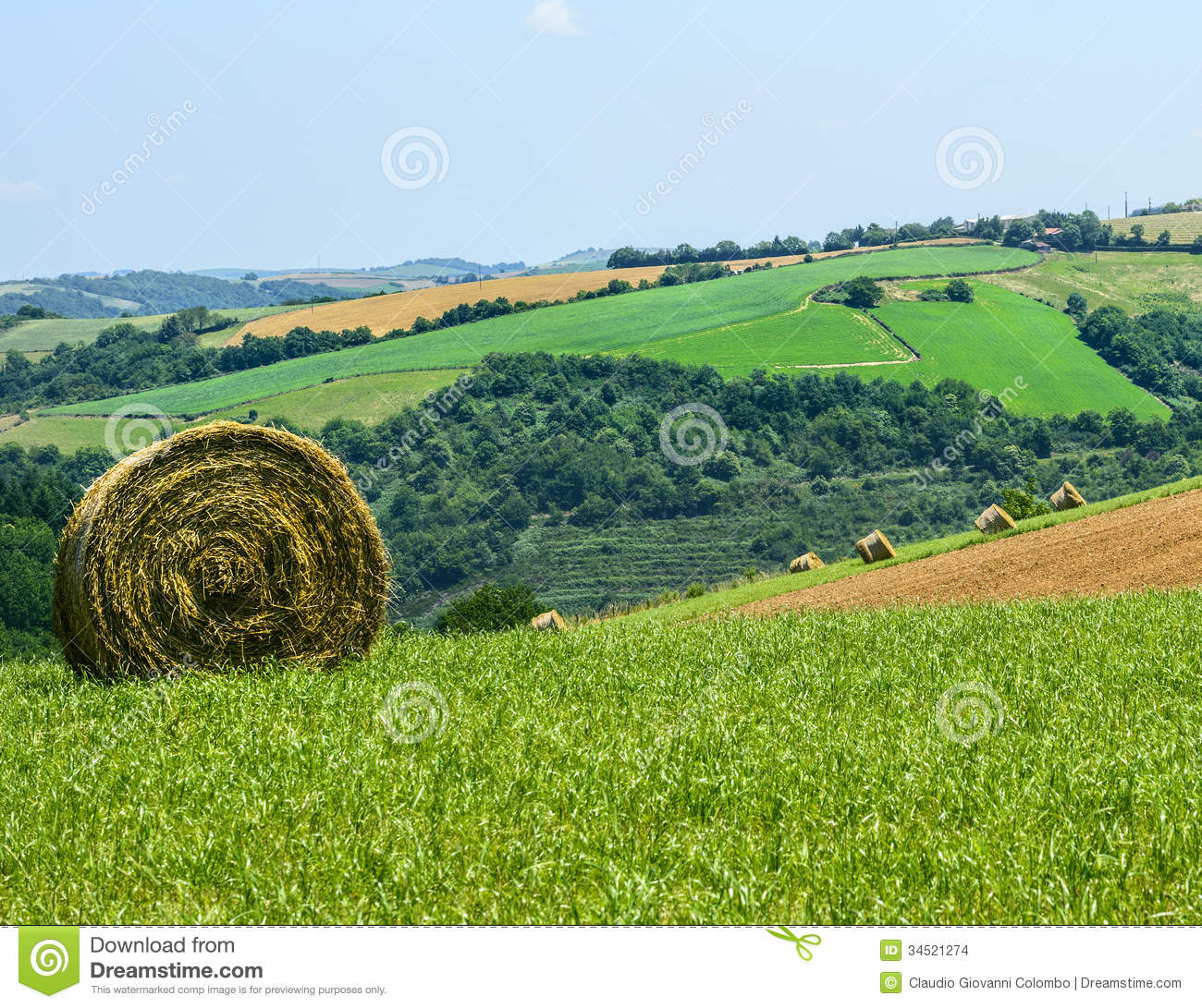 Country landscape in tarn france stock photo image of for Landscape pictures
