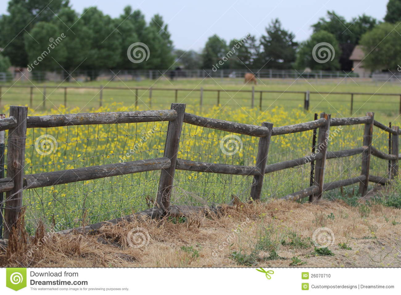 A Lodge Pole Fence With Yellow Flowers And Horse In The Background Beautiful Country Scene