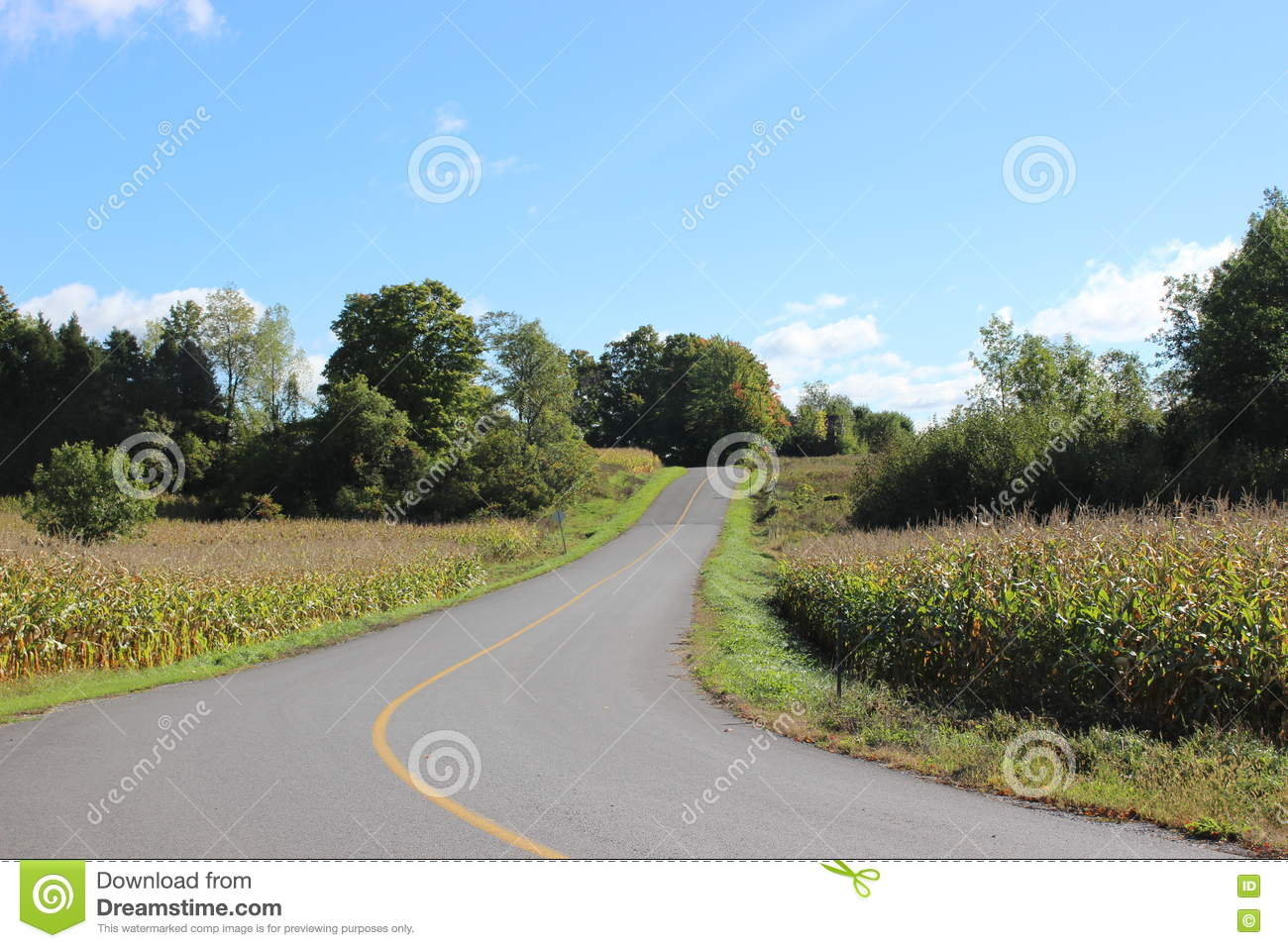 Country Road in the Eastern Townships in Quebec