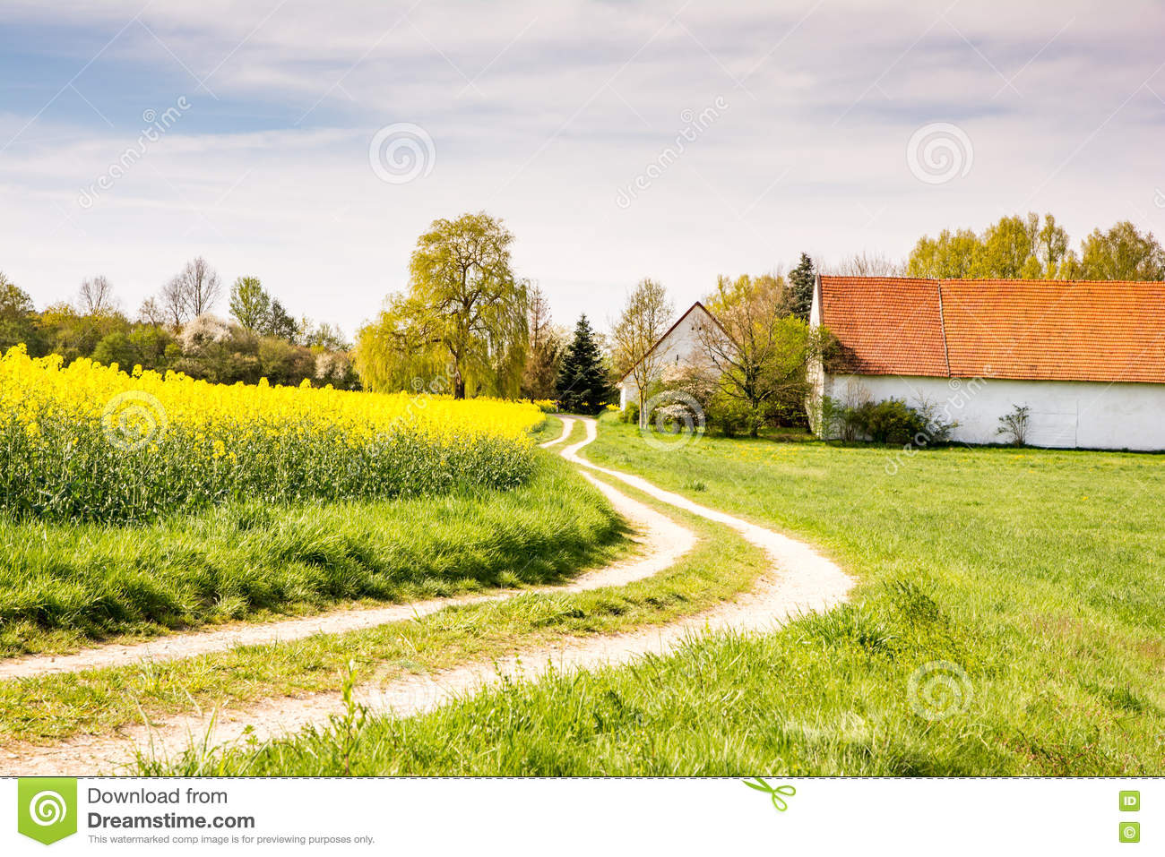 Country road to a farm at a field