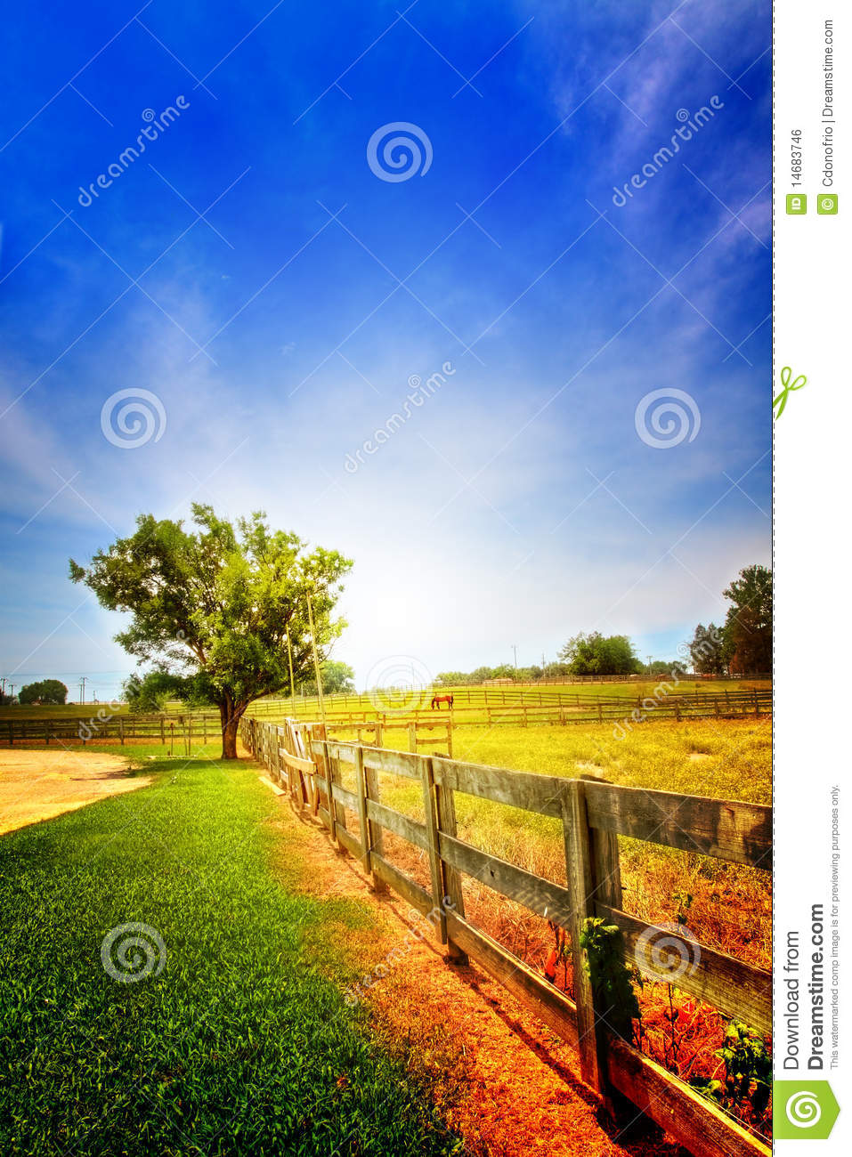 Country Scenery Royalty Free Stock Image Image 14683746