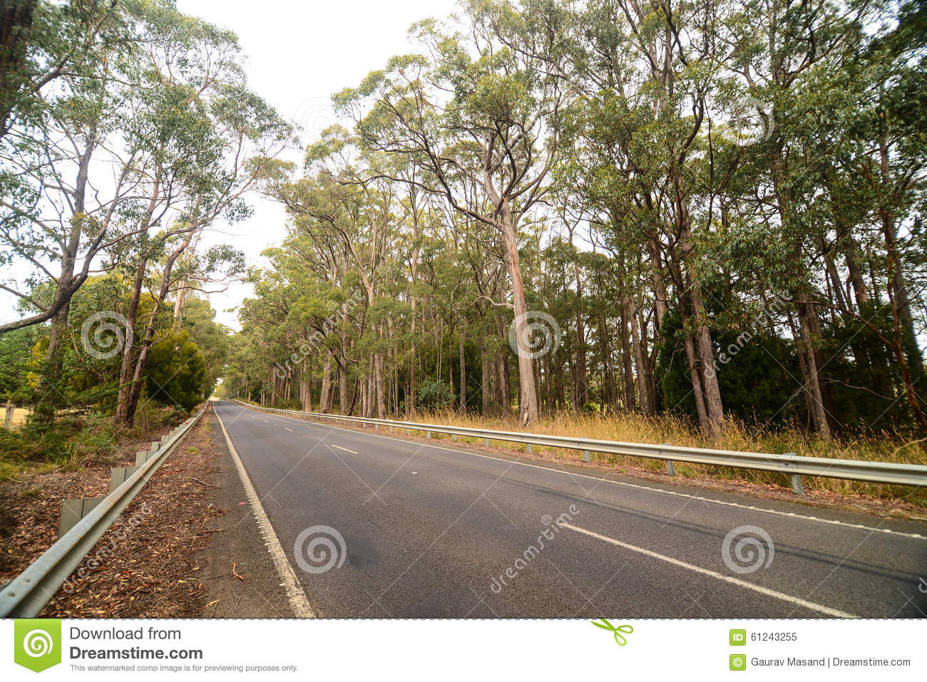 Country side along highway in Australia