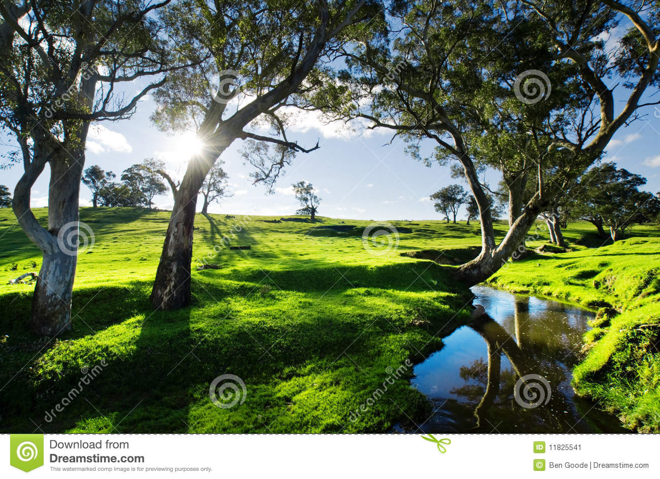 Country stream stock image image 11825541 for Landscape design adelaide hills