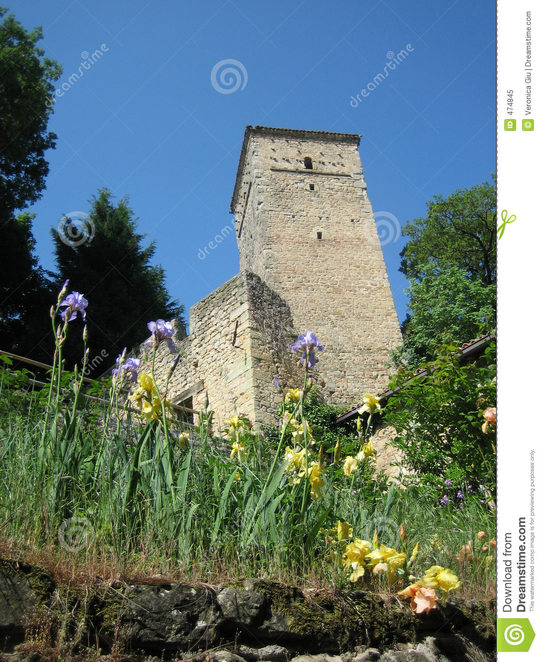 Download Country tower stock image. Image of stones, modena, green - 474845