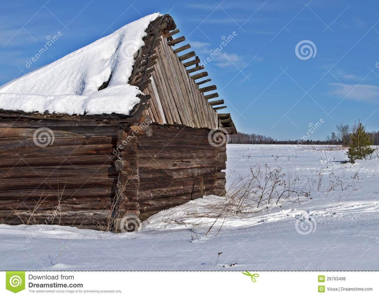 Old Barn With Broken Roof Under Snow In Winter Tiime
