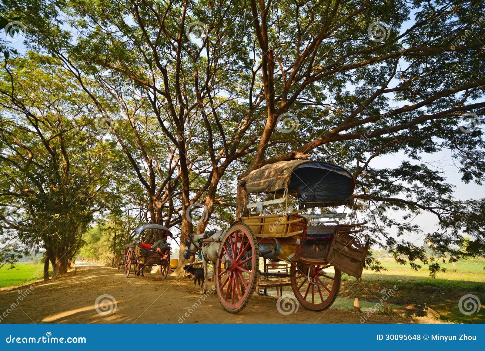 Countryside.Bagan