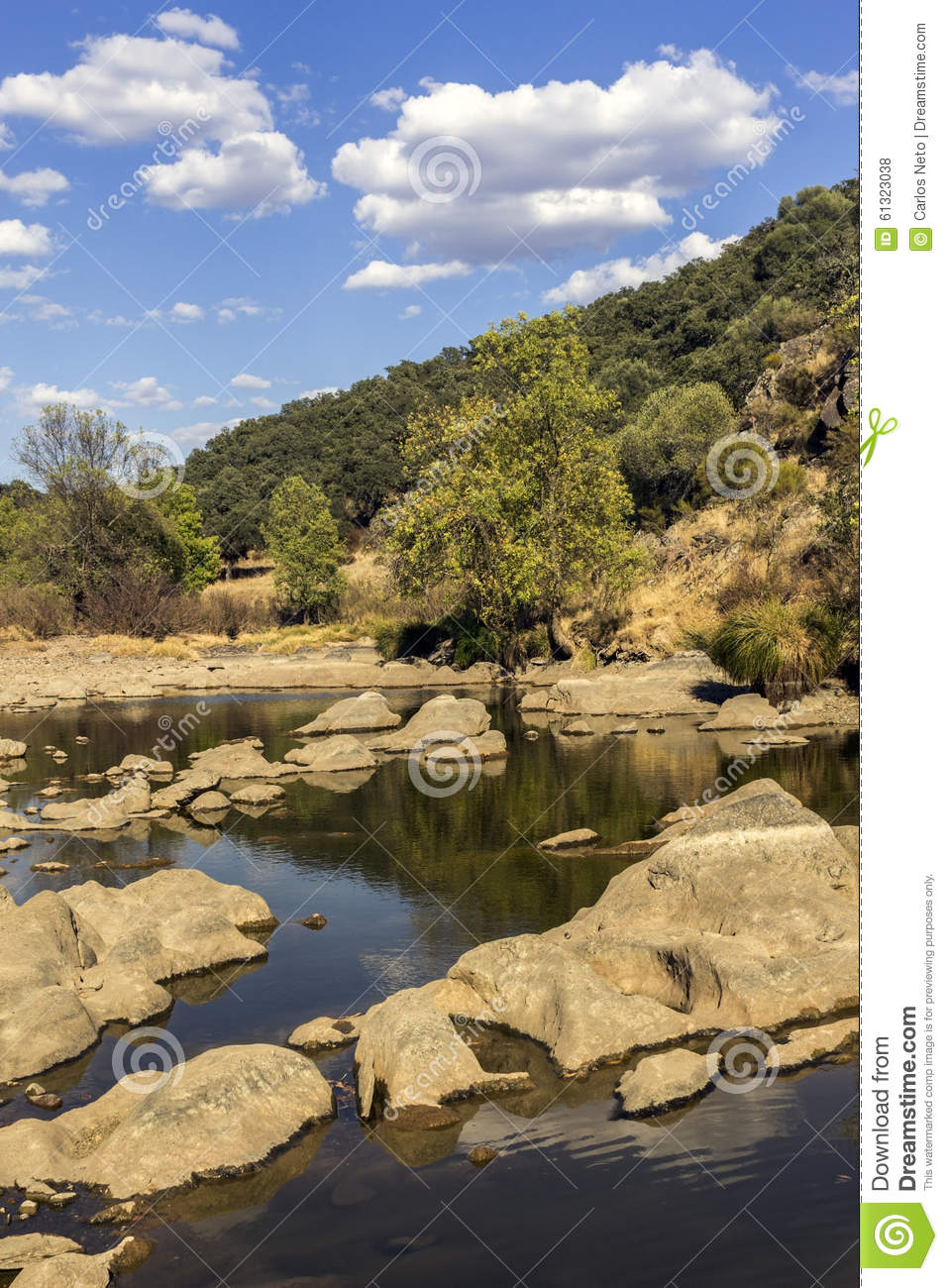 Countryside Landscape Scenic View Of A Fresh Water Stream ...
