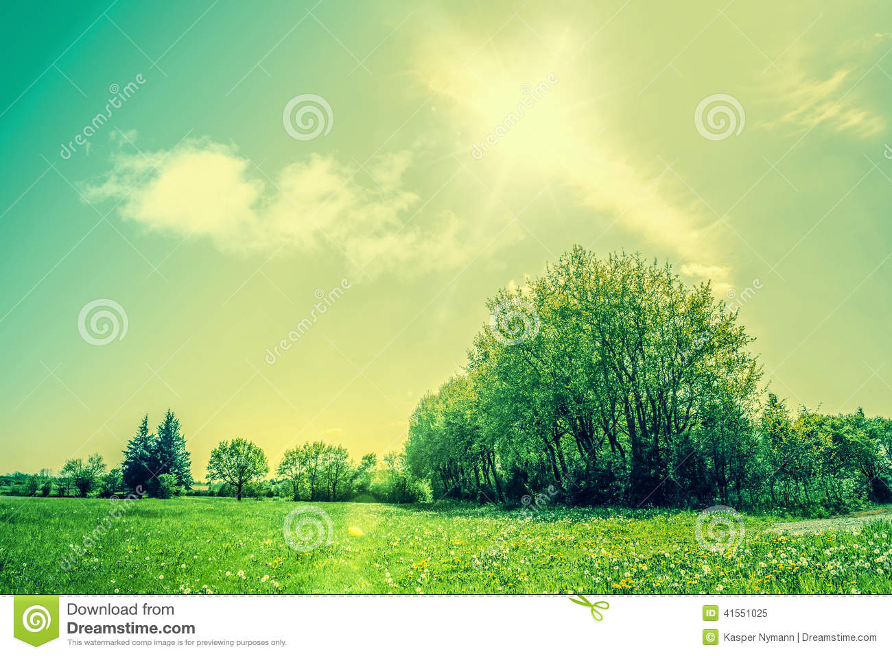 countryside scenery with green fields and sunshine stock image