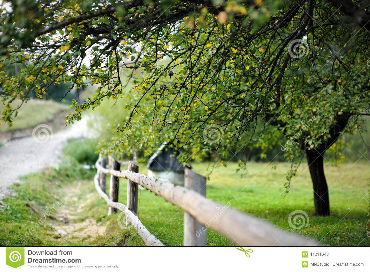 Countryside view with a fence and a tree stock photos image 11211643 - Countryside dream gardens ...