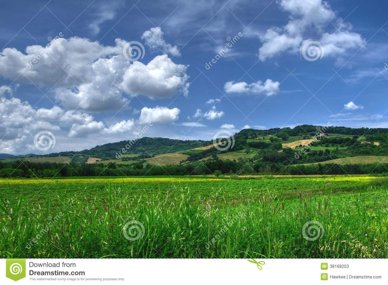 Countryside view of Tuscany, Volterra, Italy