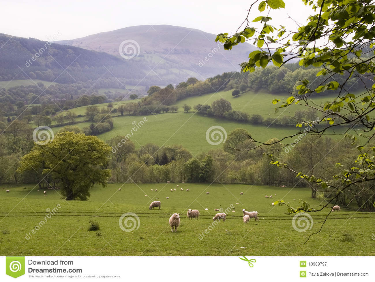 Countryside in Wales