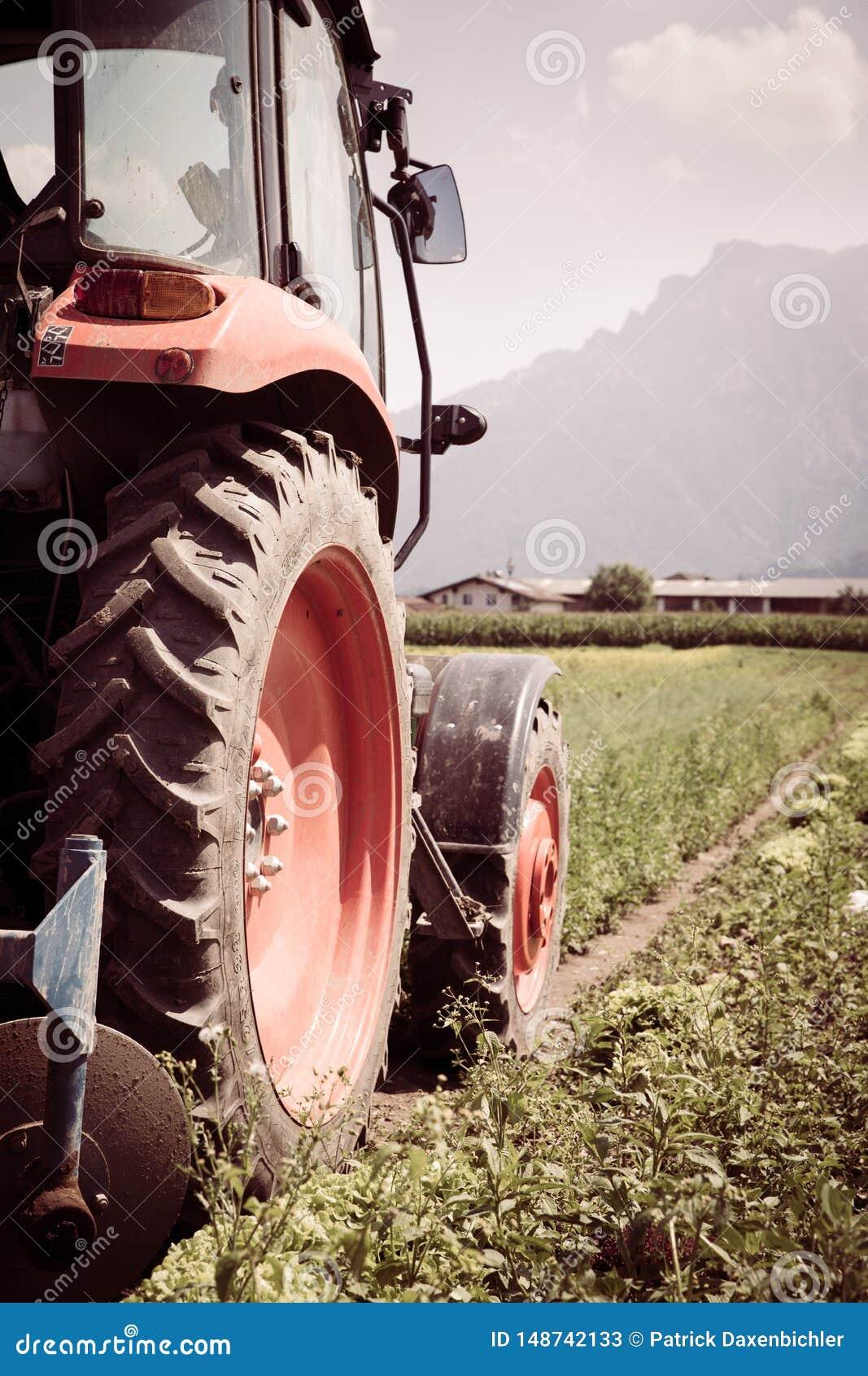 Coup? du tracteur cultivant le champ au printemps, agriculture
