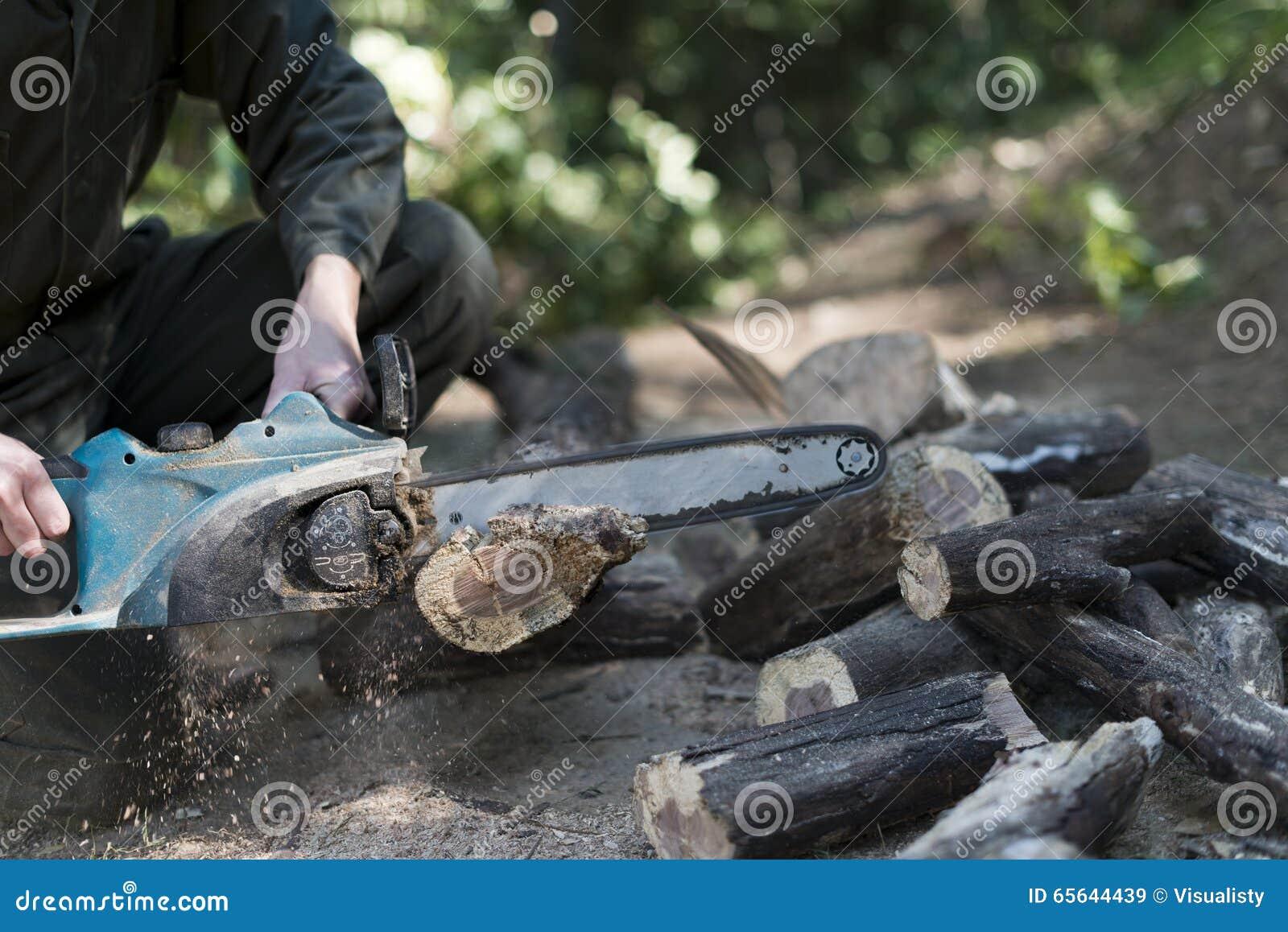 Coupe en bois avec la tronçonneuse