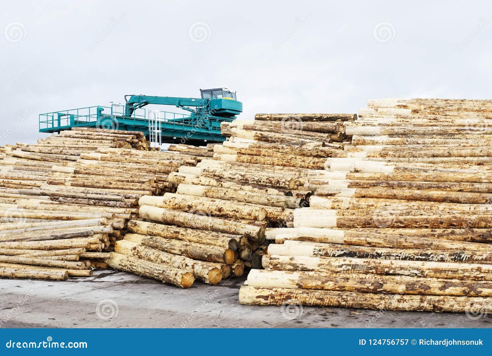 Coupe en bois de rondins de scierie l écorce étant coupée empilée en vente avec des machines à l arrière-plan