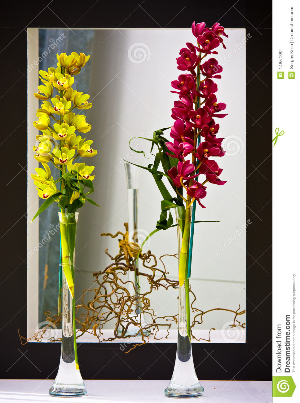 The coupe of orchids in vases