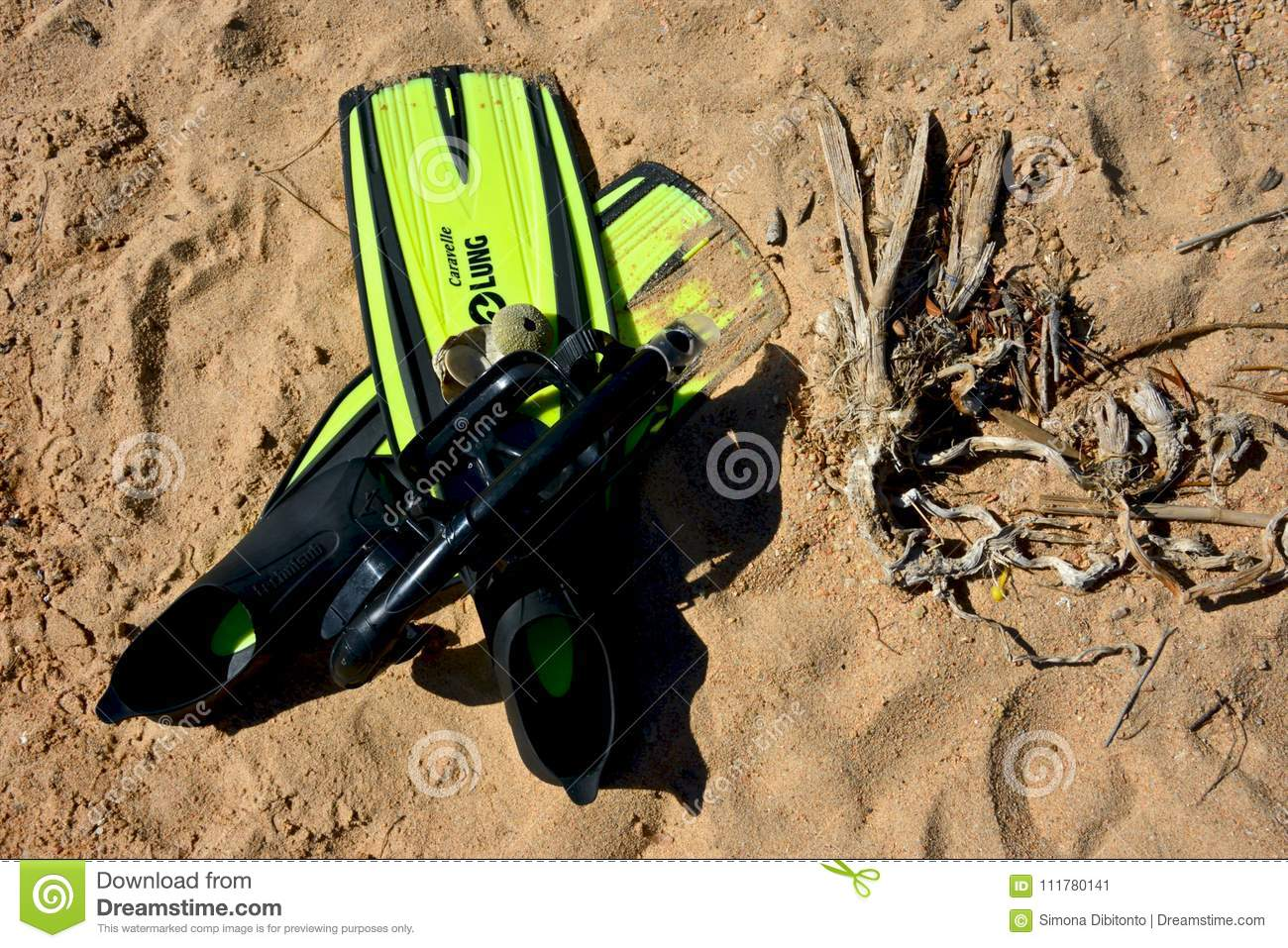 Couple of black and yellow fins with mask and some shells on a sandy beach