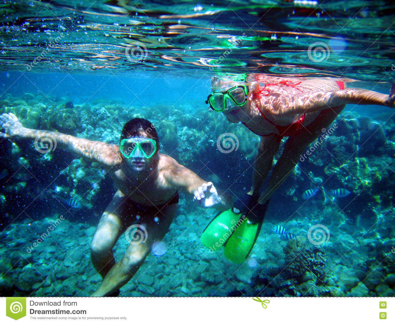 A couple of divers under water