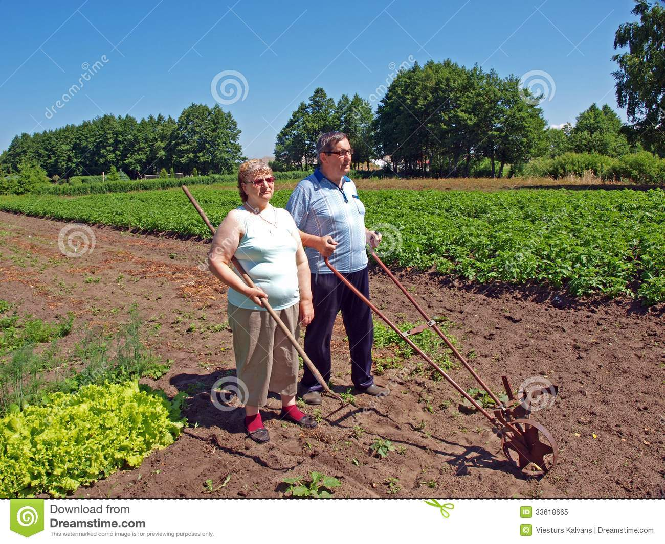 Couple Of Farmers Royalty Free Stock Photo Image 33618665