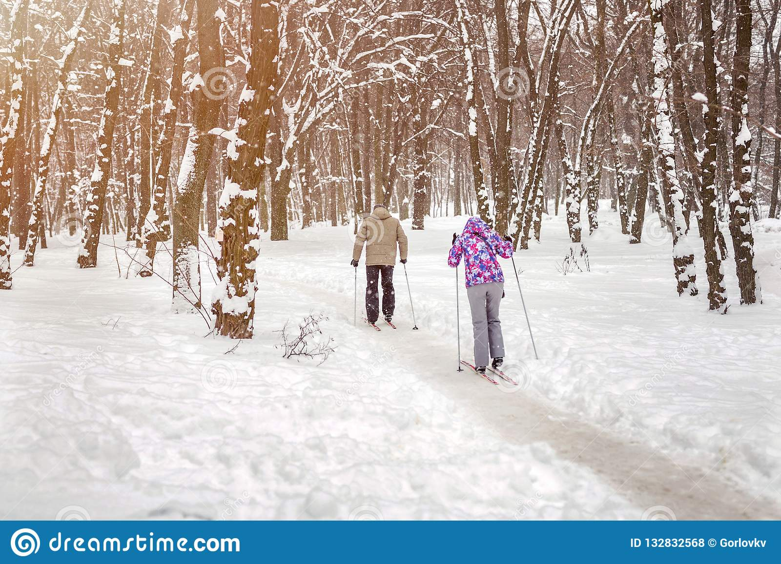 Couple of people enjoying cross-country skiing in city park or forest in winter. Family Sport outdoor activities in winter season