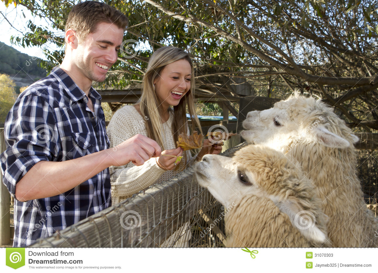 Datings zoo