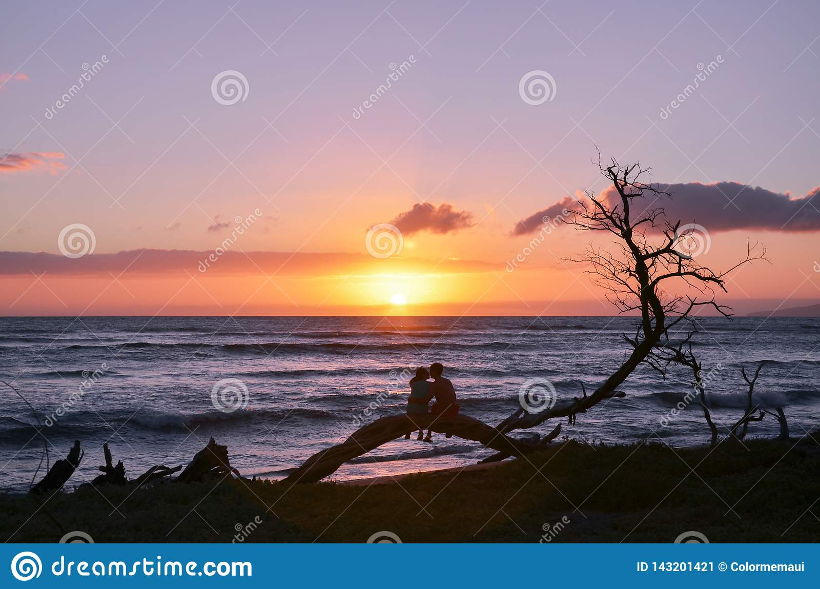 A Couple Sitting on a Tree Branch on the Beach during Sunset in Maui Hawaii