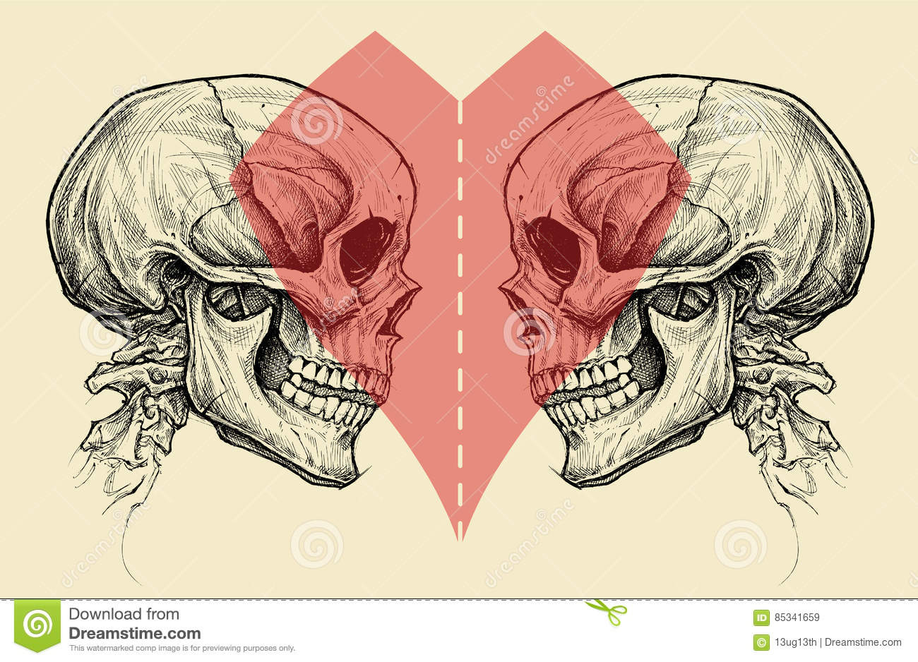 Couple Skulls And Heart Symbol With Scissors Cut Line. Stock Vector ...