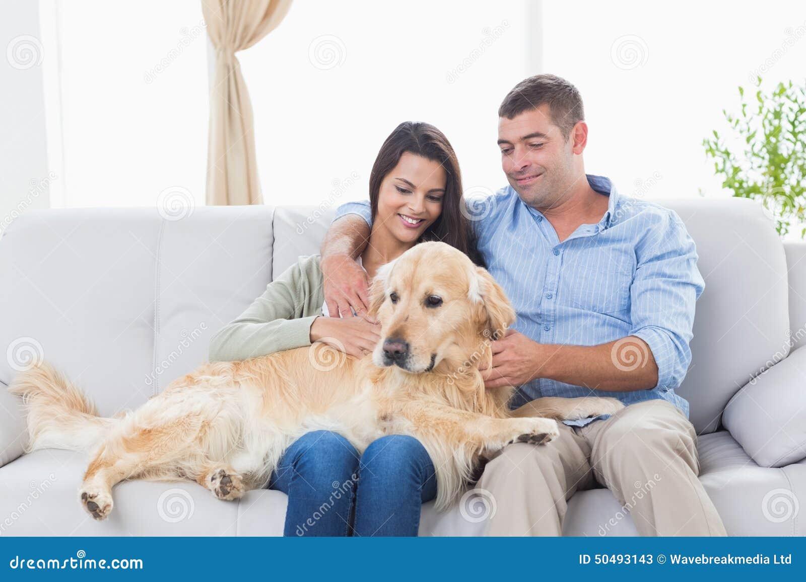 Couple Stroking Dog While Sitting On Sofa Stock Image Image Of