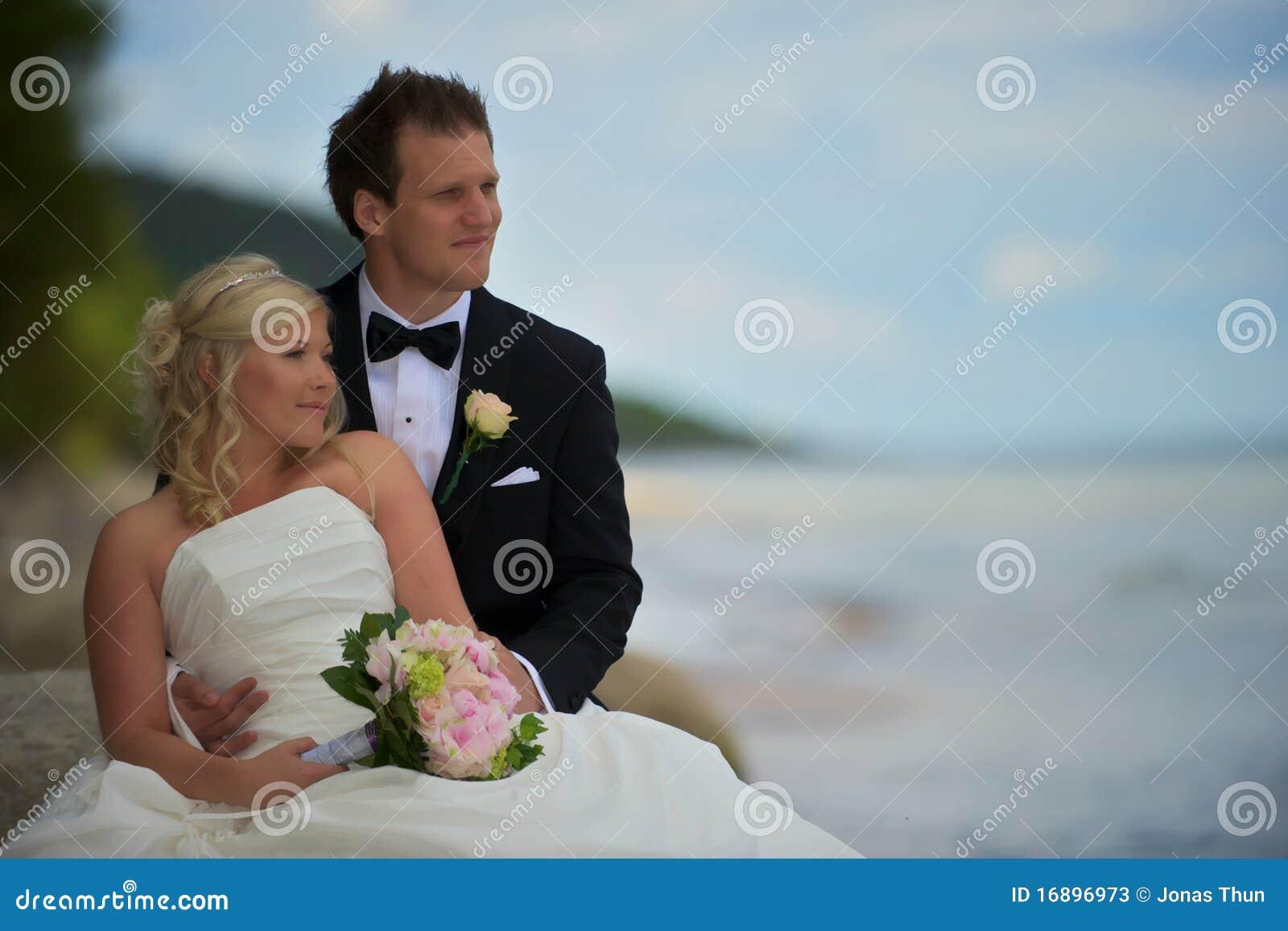 couples de mariage sur la plage photos stock image 16896973. Black Bedroom Furniture Sets. Home Design Ideas
