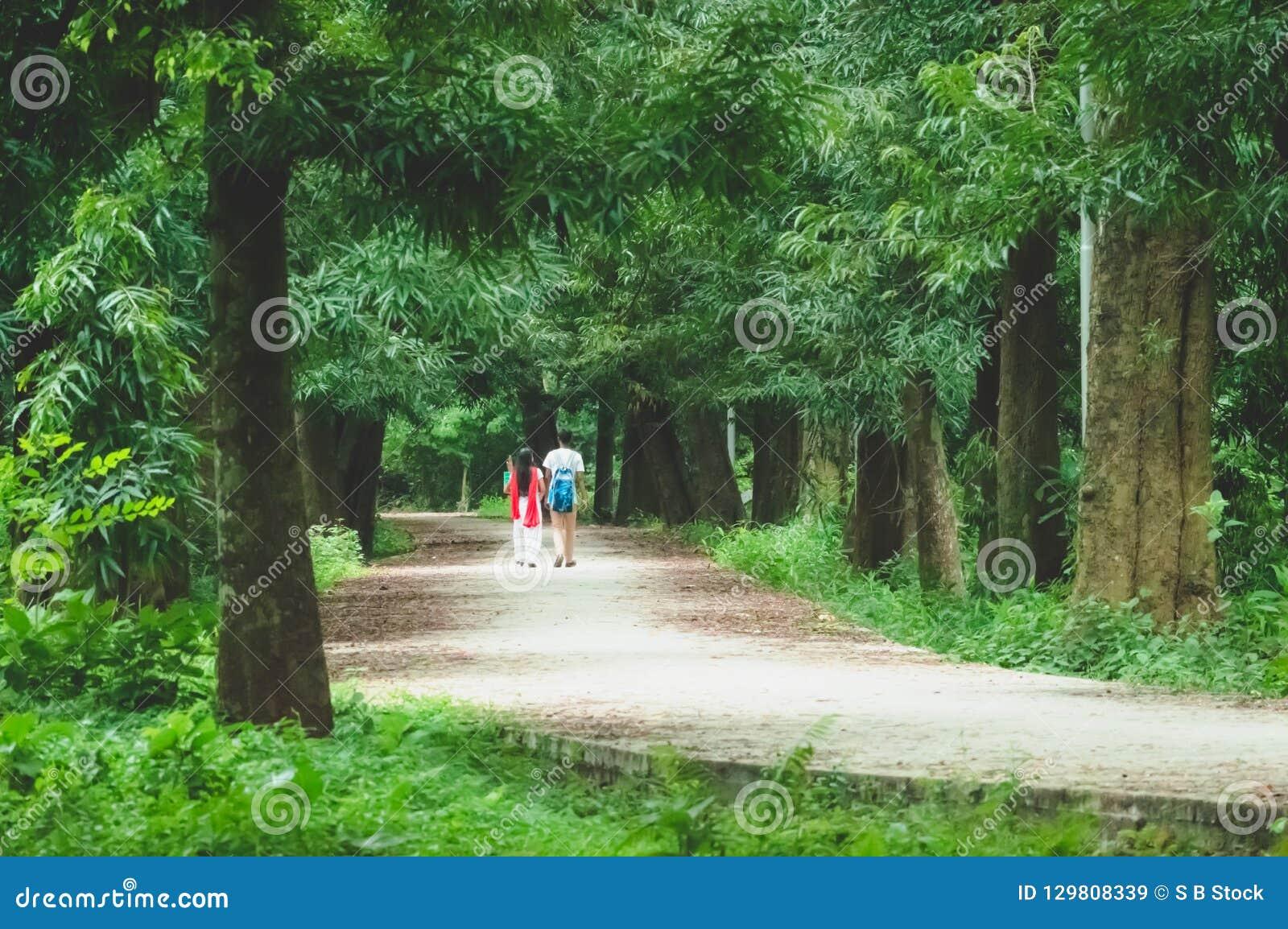 Couples marchant en parc