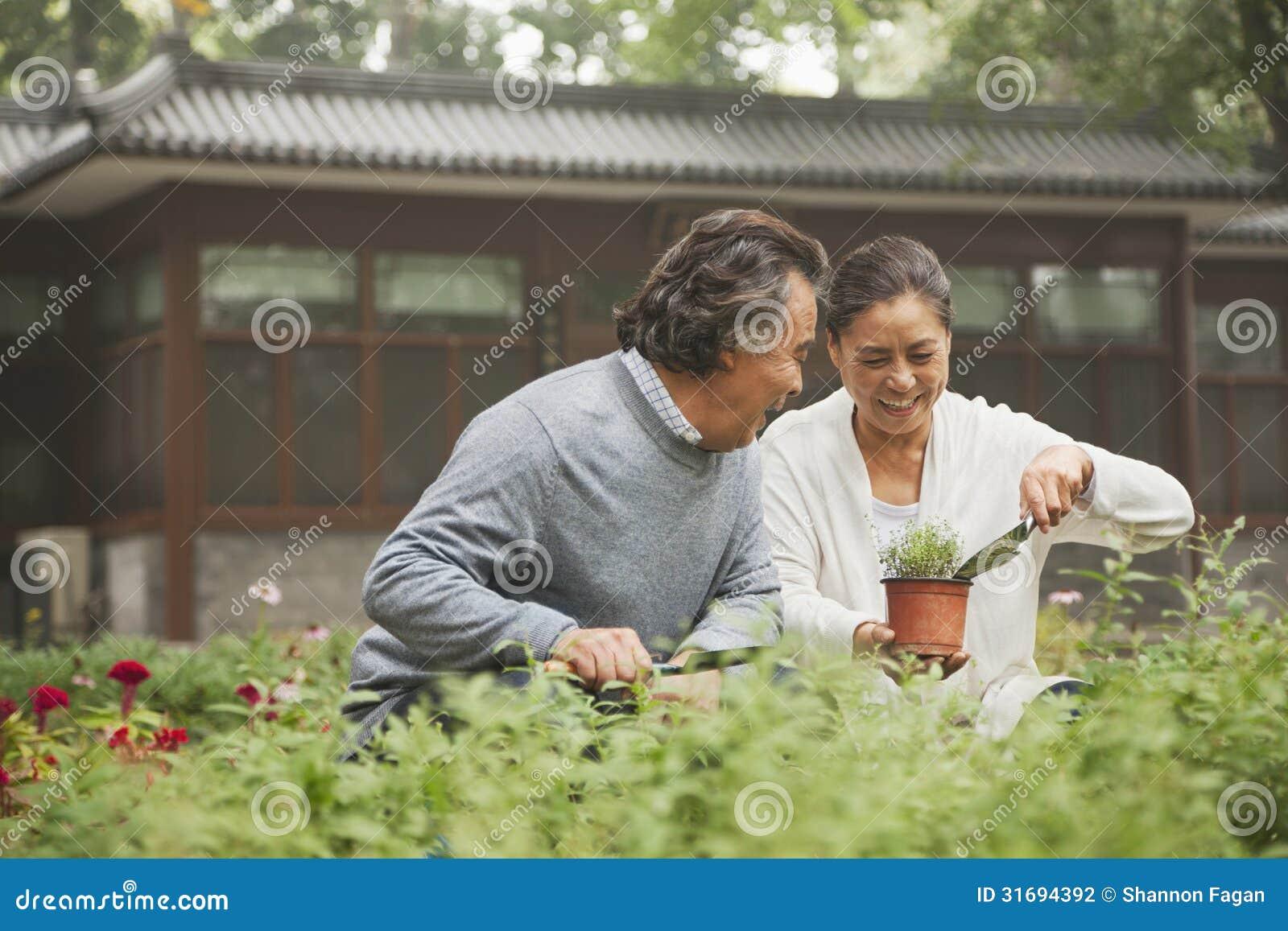 Couples supérieurs de sourire dans le jardin