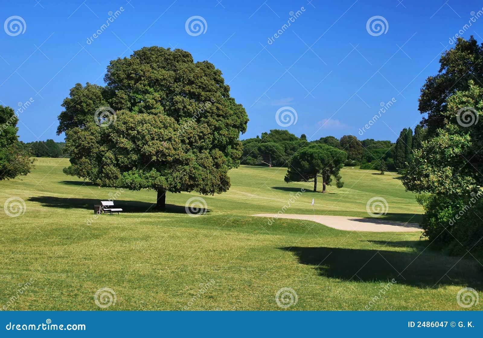 Cour de jeu de golf