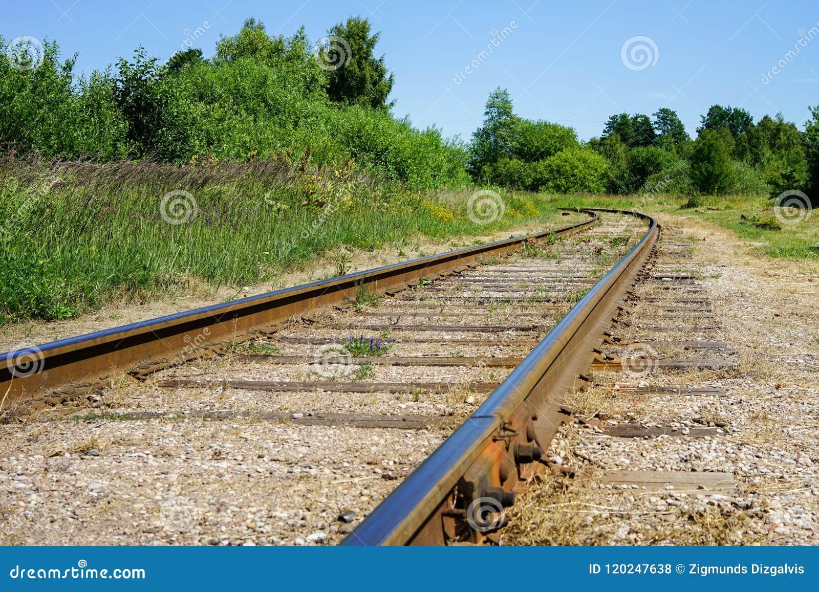 Courber la ligne de rail enroule sa voie par des arbres et des forêts