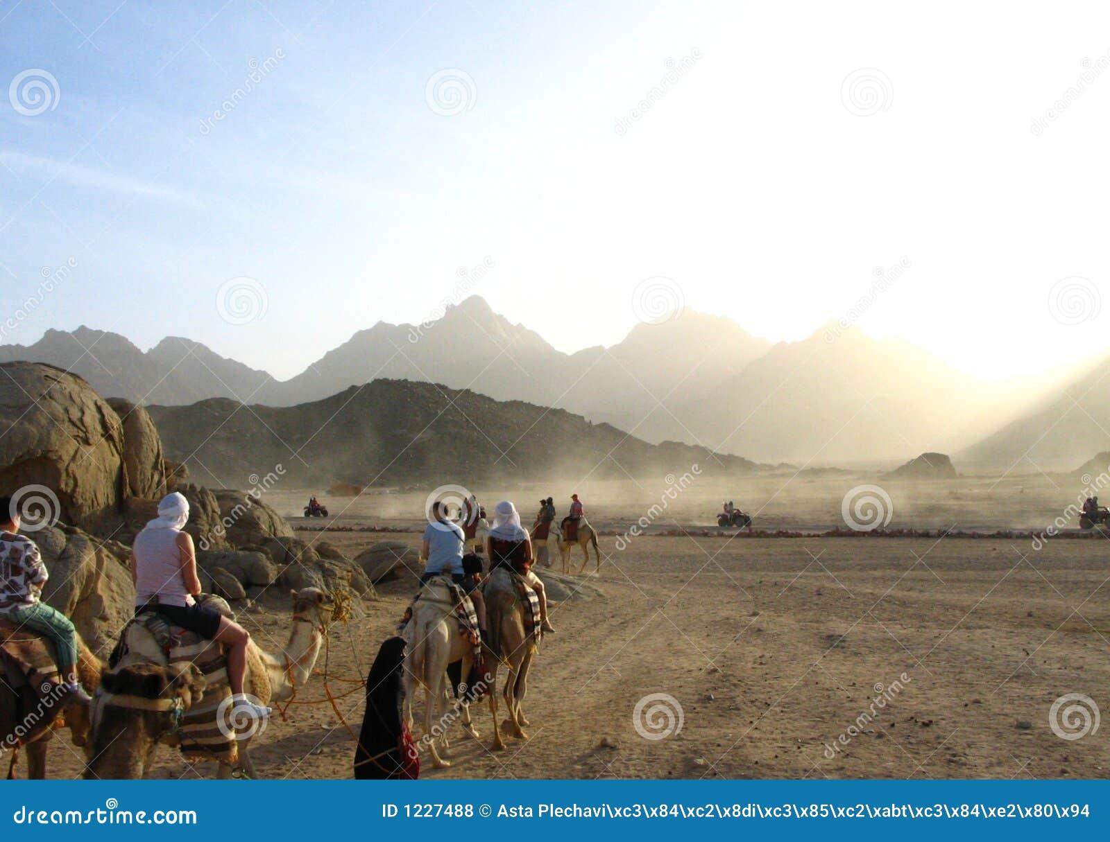 Course par le désert