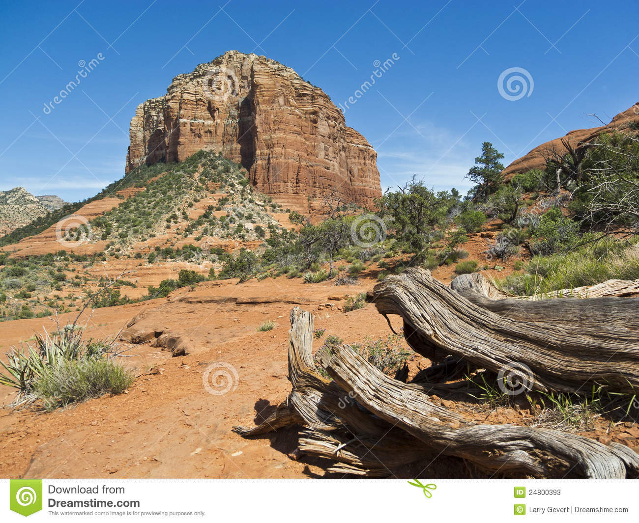 Natural Resources In Sedona Arizona