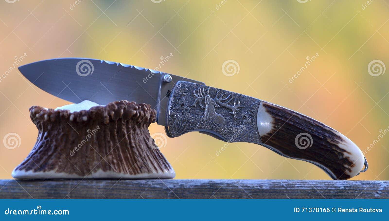 Couteau de poche de chasse avec la gravure de cerfs communs