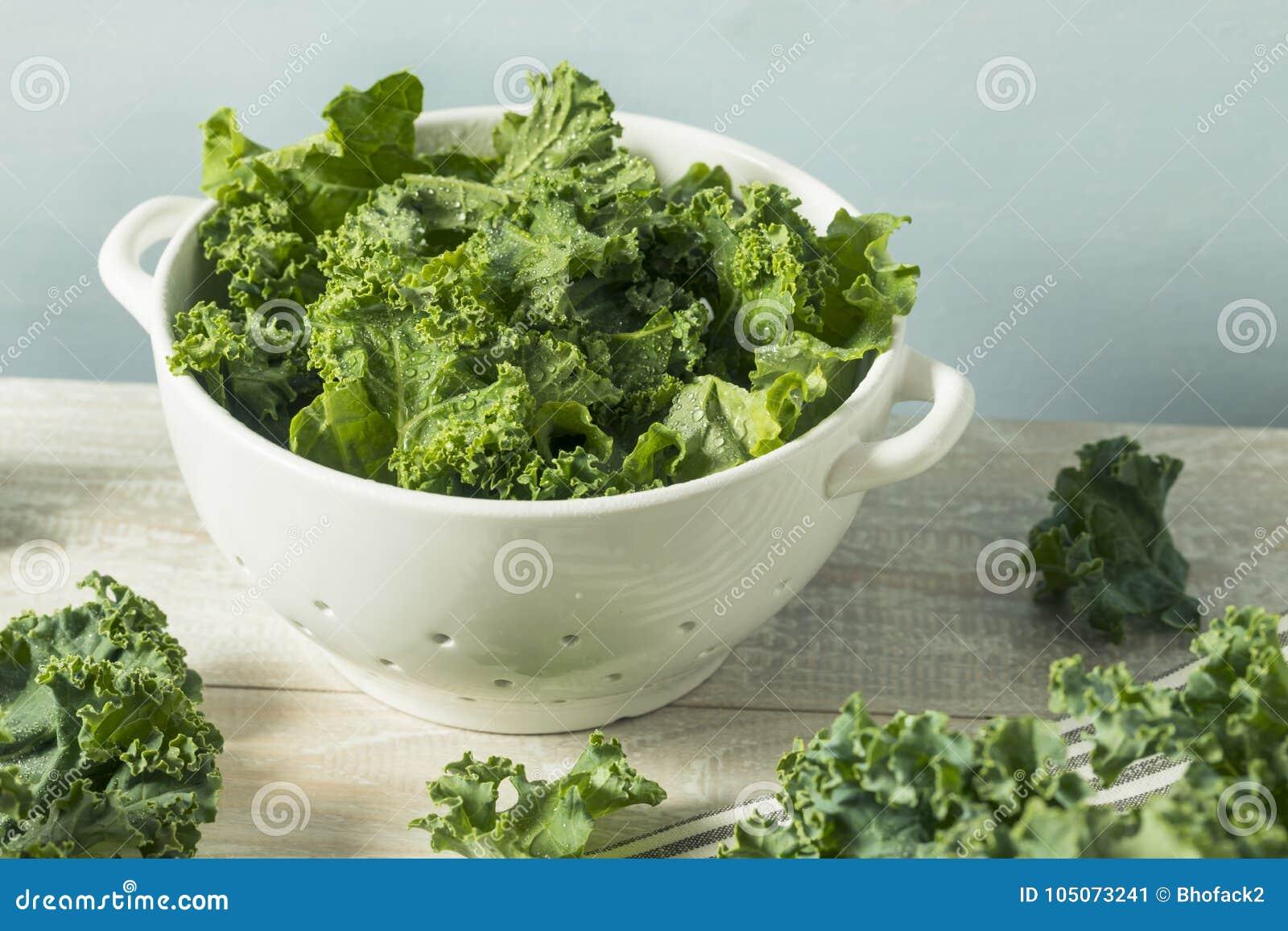 Couve encaracolado orgânica verde crua