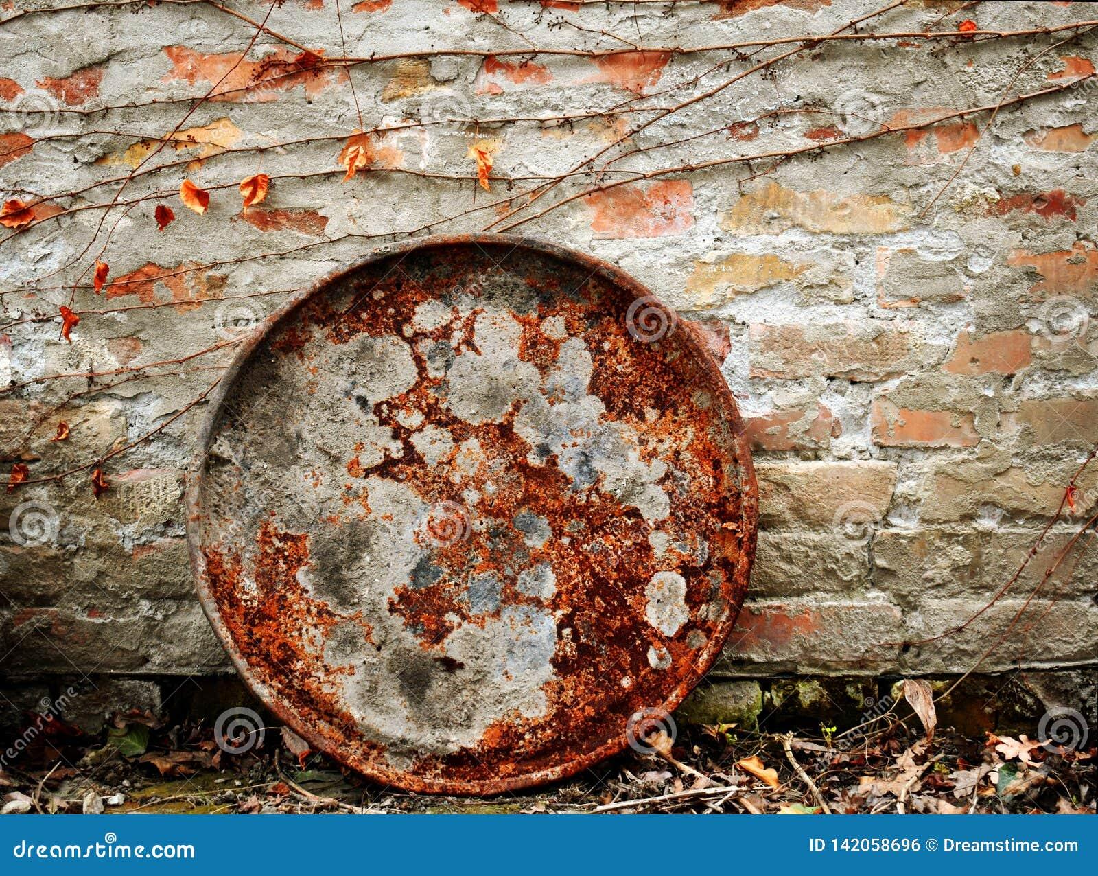 Couvercle rouillé de baril sur le mur de briques rouge et la branche et les feuilles sèches de lierre